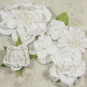 Prima - Symphony Blend -  Andante White